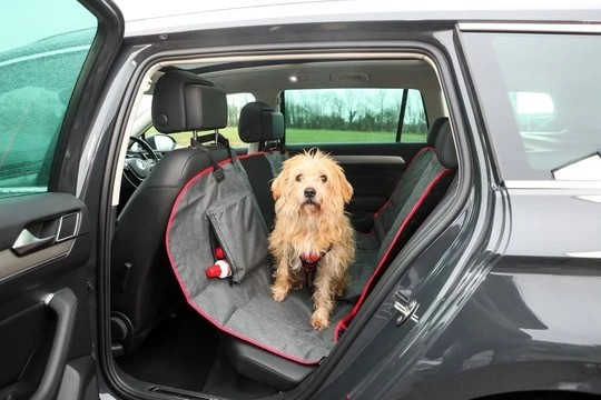 KONG 2-In-1 Bench Seat Cover and Hammock